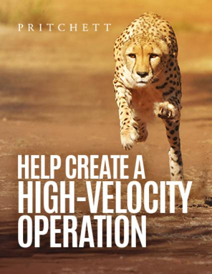 Help Create a High-Velocity Operation