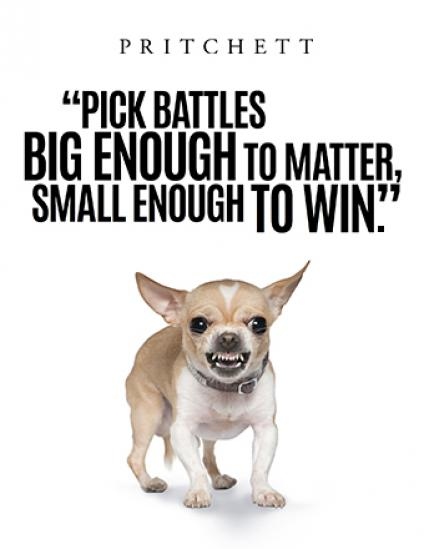 """Pick Battles Big Enough To Matter, But Small Enough To Win."" - Jonathan Kozol"